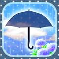 梅雨に傘がない
